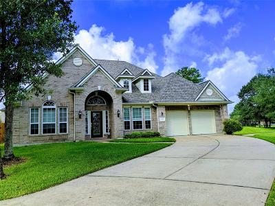 Tomball Single Family Home For Sale: 17331 Lyric Way Drive
