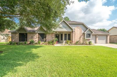 Friendswood Single Family Home For Sale: 803 Lancaster Drive