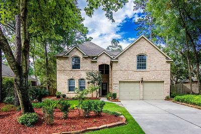 The Woodlands Single Family Home For Sale: 6 E Night Heron Place