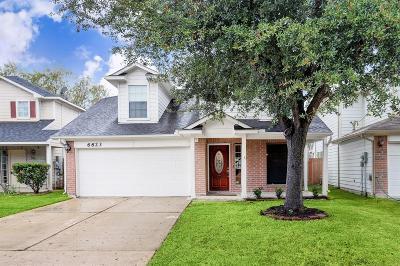 Katy Single Family Home For Sale: 6623 Valerian Lane