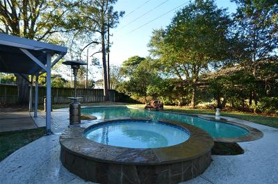 Katy Single Family Home For Sale: 21658 Park Brook Drive