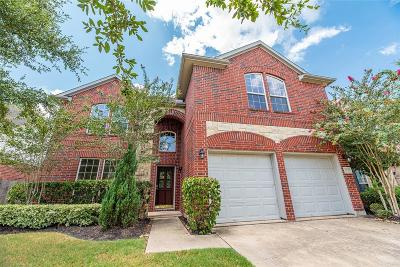 Katy Single Family Home For Sale: 6210 Hollydale Ridge Lane