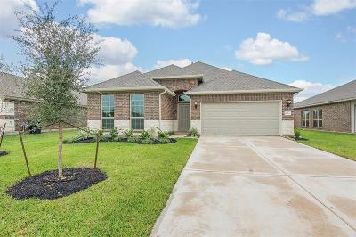Rosenberg Single Family Home For Sale: 6211 Kolle Drive