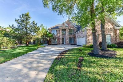 Baytown Single Family Home For Sale: 2925 Park Lane Drive