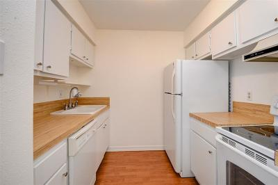 Houston TX Condo/Townhouse For Sale: $74,900