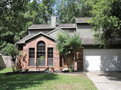 Houston Single Family Home For Sale: 5007 Dobbin Springs Lane