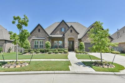 Manvel Single Family Home For Sale: 2723 Cypress Woods Lane