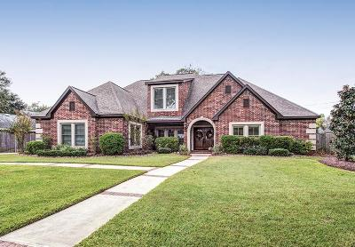 Spring Valley Single Family Home For Sale: 1105 Lone Star Drive