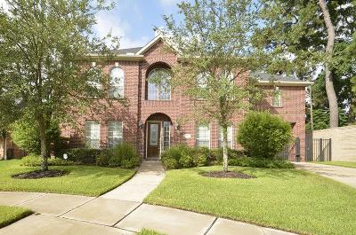 Houston Single Family Home For Sale: 6519 Montana Ridge Court