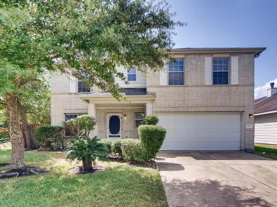 Tomball Single Family Home For Sale: 19803 Hollington Drive