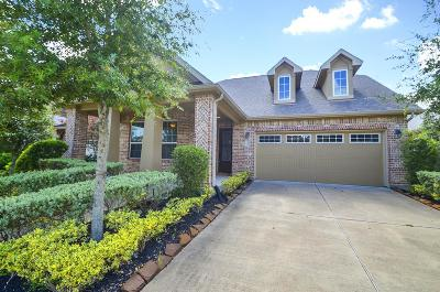 Sugar Land Single Family Home For Sale: 1122 Weldon Park Drive