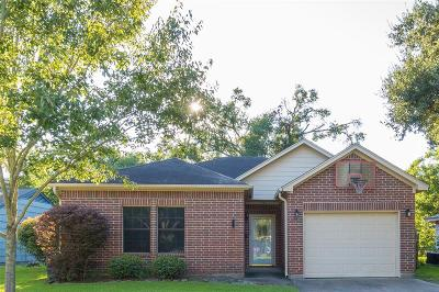 Alvin Single Family Home For Sale: 1739 S Park Drive