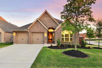 Pearland Single Family Home For Sale: 13810 Wood Shadow Lane