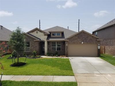 Katy Single Family Home For Sale: 23519 Verona River