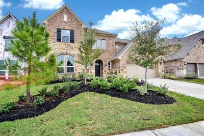 Single Family Home For Sale: 8119 Messina Mount Drive