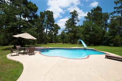 Montgomery Single Family Home For Sale: 9031 Grand Lake Estates Drive