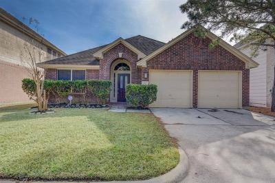 Houston Single Family Home For Sale: 8915 Fairbloom Lane