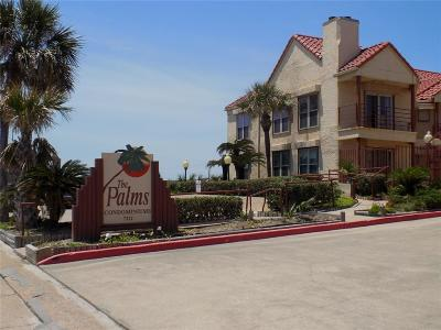 Galveston Condo/Townhouse For Sale: 7312 Seawall Boulevard #103