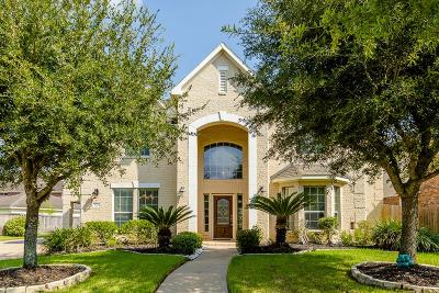 Sugar Land Single Family Home For Sale: 5210 Fountainbrook Lane