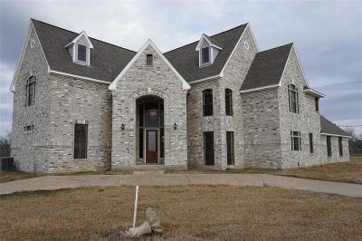 Brazoria Single Family Home For Sale: 19703 County Road 510