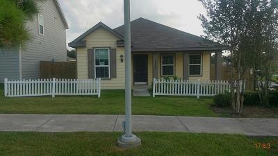 Willis Single Family Home For Sale: 10900 S Lake Mist Lane