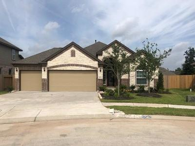 Porter Single Family Home For Sale: 21671 Tea Tree Olive Place