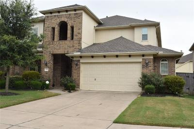 Katy Single Family Home For Sale: 28511 Birchfield Oak Court