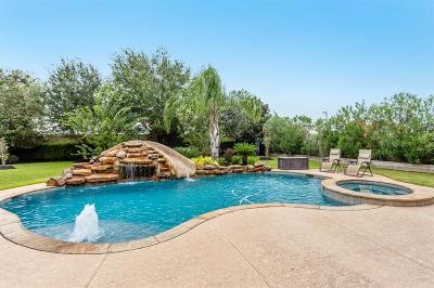 Friendswood Single Family Home For Sale: 1337 Stoney Lake Drive