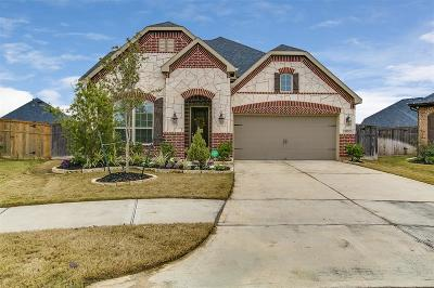 Fulshear Single Family Home For Sale: 3503 Big Hickory Court