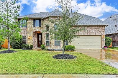 Spring Single Family Home For Sale: 28030 Burro Springs Lane