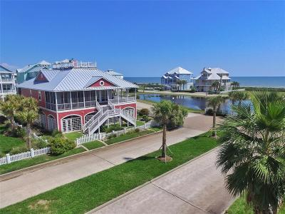 Galveston Single Family Home For Sale: 3819 Grand Avenue