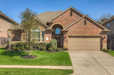 Conroe Single Family Home For Sale: 110 Jacobs Meadow Drive