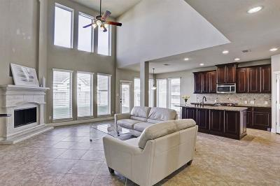 Pearland Single Family Home For Sale: 2620 Sweet Wind Drive