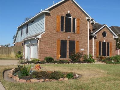 Baytown Single Family Home For Sale: 5119 Cotton Creek Drive