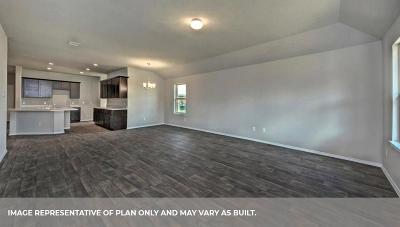 Fort Bend County Single Family Home For Sale: 607 Green Clover Lane