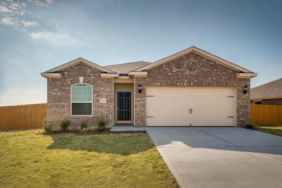 Katy Single Family Home For Sale: 1021 Thunder Field Drive