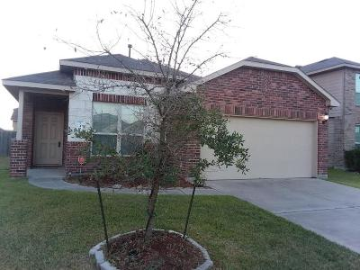 Katy Single Family Home For Sale: 5407 Rustling Gates Lane