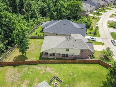 Montgomery Single Family Home For Sale: 223 Capriccio Lane