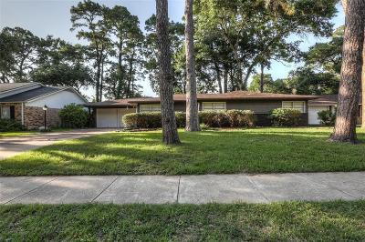 Houston Single Family Home For Sale: 10238 Knoboak Drive