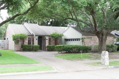 Houston Single Family Home For Sale: 2203 Gray Falls Drive