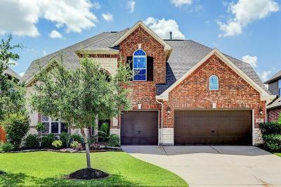 Friendswood Single Family Home For Sale: 1107 Hancock Springs Lane