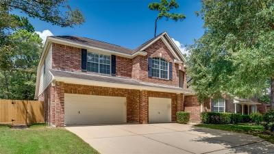 The Woodlands Single Family Home For Sale: 19 Westwinds Circle
