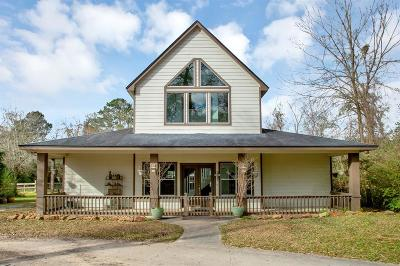 Tomball Single Family Home For Sale: 20002 Angeli Drive