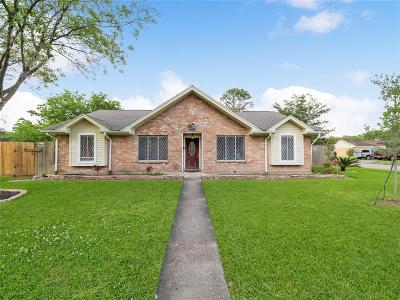 Houston Single Family Home For Sale: 10535 Sagewillow Lane