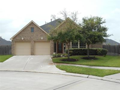 Sugar Land Single Family Home For Sale: 5707 Pearl Pass Court