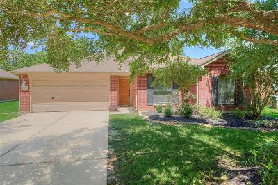 Montgomery County Single Family Home For Sale: 26123 Richards Road