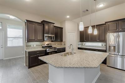 Conroe Single Family Home For Sale: 10098 Black Maple Drive