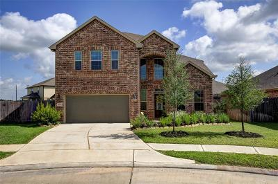 Cypress Single Family Home For Sale: 14607 W Ginger Pear Court