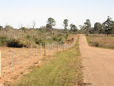 Colorado County Farm & Ranch For Sale: 00000 Piney Woods Road