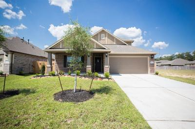 New Caney Single Family Home For Sale: 18824 Palmetto Hills Drive